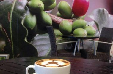 cafebarista.jpg