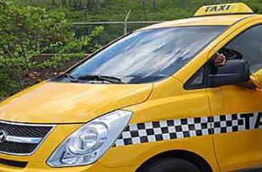 cat-taxi1.jpg