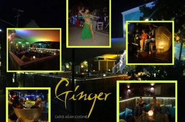 ginger-4.jpg