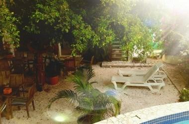 hotel-scharloo-garden.jpg