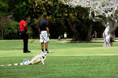 img-curacao-golf-and-squash-club.jpg