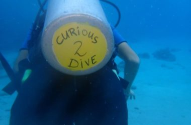 img-curious-to-dive.jpg