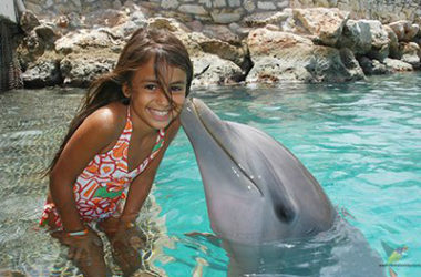 img-dolphin-encounter.jpg