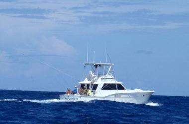 img-fish-charter.jpg