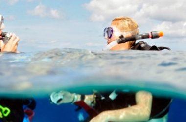 img-go-west-diving.jpg