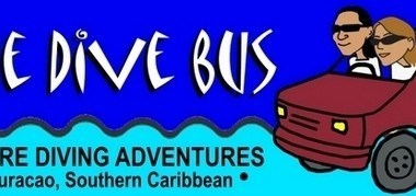 img-the-dive-bus-curacao.jpg