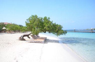 img2-barbara-beach.jpg