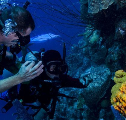 B Diving & Watersports
