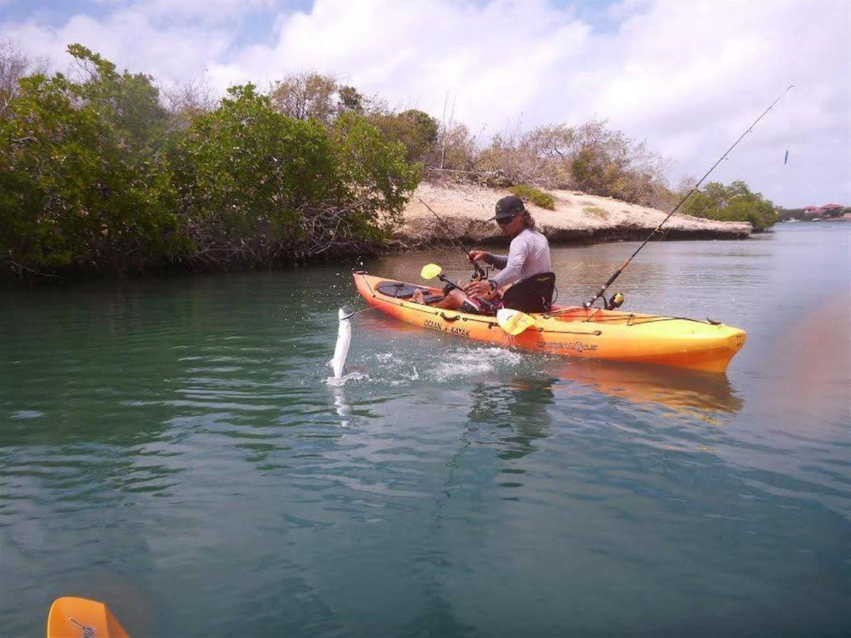 Kayak fishing adventure Curacao