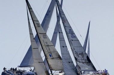 Novus-Arca-regatta