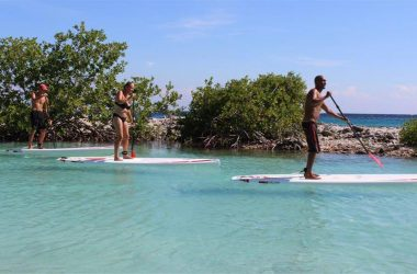 Paddle Boarding (SUP) Tour Curacao 3