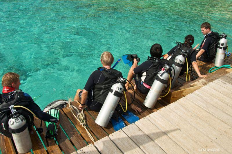 go-west-diving