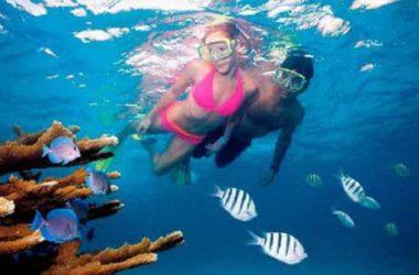 img-bounty-snorkeling1.jpg