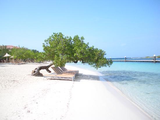 img2-barbara-beach
