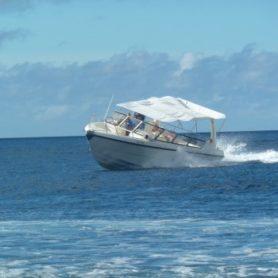 Adrenaline Klein Curacao Express