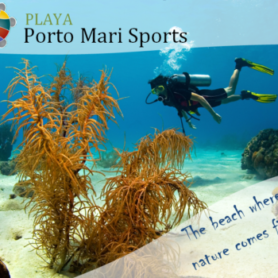 Porto Mari Sports