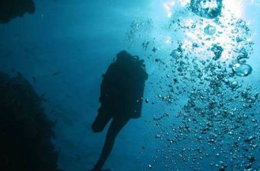 relaxed-guided-divers
